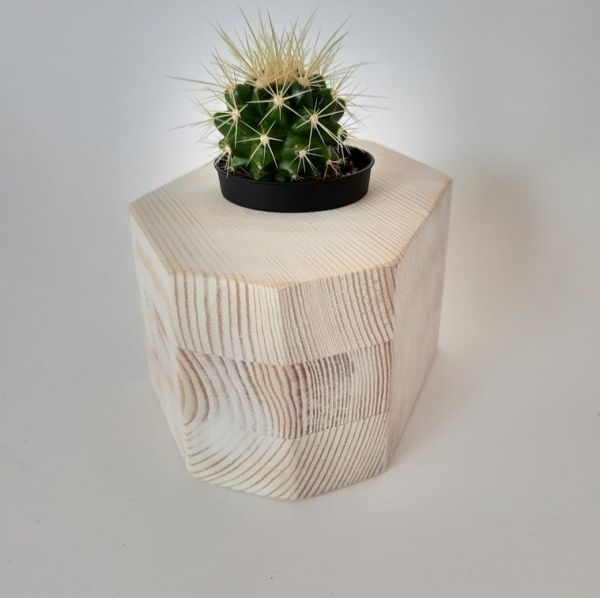 Decorațiune  MINI CACTUS WHITE