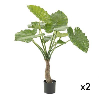 Plantă artificială ALOCASIA - Set 2 buc.
