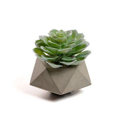 Plantă artificială OVERA