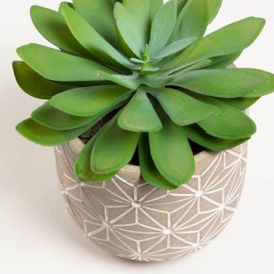 Plantă artificială LOM 23.7 CM