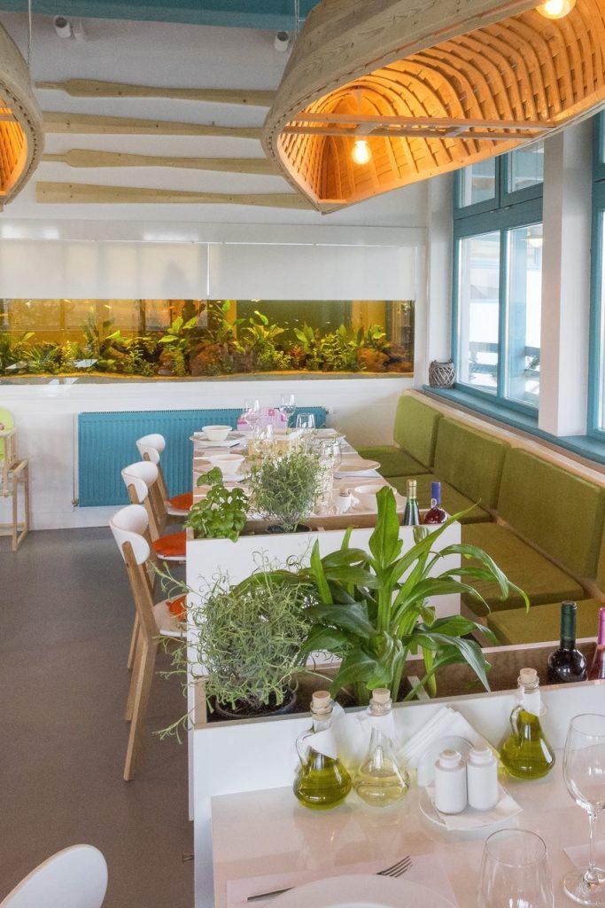 Proiecte faine: Restaurant Peste si vin